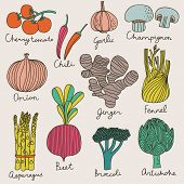 Tasty vegetables in bright set - cherry tomato, chili, garlic, champignon, onion, ginger, fennel, as