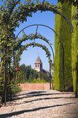 Archway in the garden