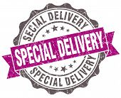 Special Delivery Violet Grunge Retro Style Isolated Seal