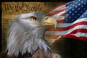 image of american flags  - Head of bald eagle with American flag and Constitution