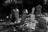 stock photo of headstones  - Graveyard with Headstones and Skull in black and white - JPG