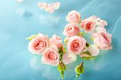 stock photo of floating  - Floating pink roses close up - JPG