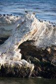 California Coastline Rocks