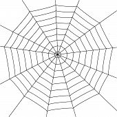 picture of spider web  - illustration with spider web isolated on white background - JPG