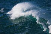 tosenden ozean wave