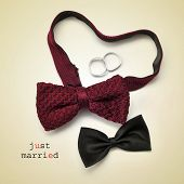 a pair of bow ties, one of them forming a heart, wedding rings and the sentence just married on a be