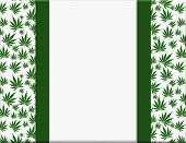 Marijuana Leaves Frame With Ribbon Background