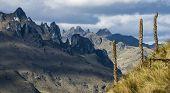 Andes. Cajas National Park, Ecuador
