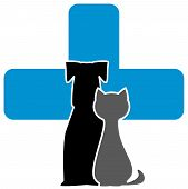 veterinary Care Icon