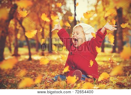 Happy Little Child, Baby Girl Laughing And Playing In Autumn poster