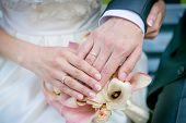 Hands Of The Bride And Groom.