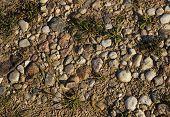 white pebble stone on ground texture