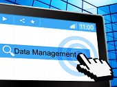 Management Data Shows Authority Bytes And Fact