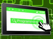 Online Programming Represents World Wide Web And Application
