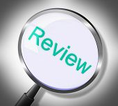 Magnifier Review Indicates Searches Evaluate And Evaluation