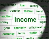 Earnings Revenue Represents Employed Income And Salary