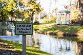 Warning Sign For Alligators
