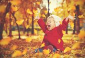 stock photo of foliage  - happy little child baby girl laughing and playing in the autumn on the nature walk outdoors - JPG