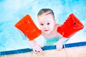 Cute Toddler Having Fun In A Swimming Pool Wearing Red Armbands For Safety