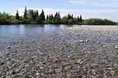 Pebble Reef On The North River.