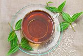 Tea and green leaves