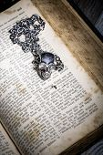 Bible With Skull