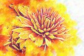 Chrysanthemums. Stylized Under Painting. Pastel