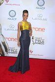 LOS ANGELES - FEB 6:  Shaun Robinson at the 46th NAACP Image Awards Arrivals at a Pasadena Convention Center on February 6, 2015 in Pasadena, CA