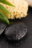 picture of pumice stone  - Green leaf on spa stone on wet black surface - JPG