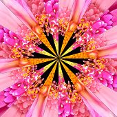 Pink Flower Center Collage Geometric Pattern