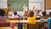 foto of pupils  - Pupils raising their hands during class at the elementary school - JPG