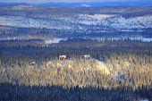 Winter Landscape In Finland.