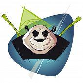 powerful panda illustration
