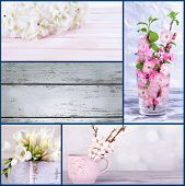 Collage of photos with flowers on wooden background