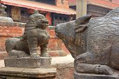 PATAN, NEPAL - APRIL 2014 : A statue of cow and snow lion at Patan Darbar Square on 13 April 2014 in Patan, Nepal