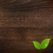 Wooden Texture With Leaf With Gradient Mesh, Vector Illustration