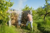 foto of prunes  - Agricultural worker setting fire to pruned branches inside a burner made of concrete blocks - JPG