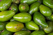 foto of avocado tree  - Avocados fruit background sell in Dalat Market - JPG