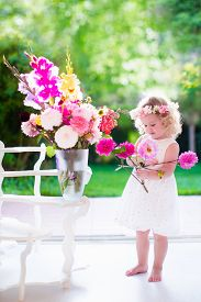 picture of windows doors  - Little girl arranging flowers at home in a vase - JPG