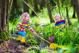 picture of baby frog  - Children playing outdoors - JPG