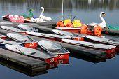 Barcos de remo em um lago