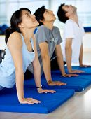 Постер, плакат: Группа людей в тренажерном зале делать упражнения йоги