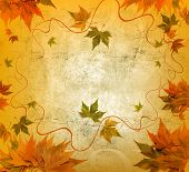 art autumn frame
