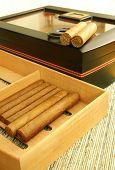 Cigars And Humidor