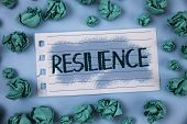 Text Sign Showing Resilience. Conceptual Photo Capacity To Recover Quickly From Difficulties Persist poster