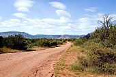 A Desert Road In Sedona 12