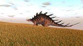 kentrosaurus in field