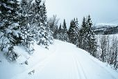 Cross Country Skiing Trail