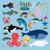Sea Animals. Vector Underwater Animal Creatures And Fish In The Sea, Swordfish And Langoustine, Ocea poster