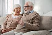 Pleasurable Weekend. Delighted Senior Couple Talking To Each Other While Resting At Home poster